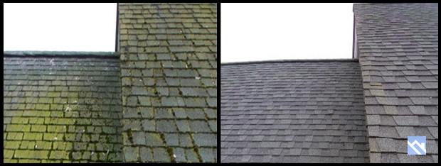 Moss, Algae, Mold, Mildew. Low Pressure Cleaning Process Restores Your Roof!